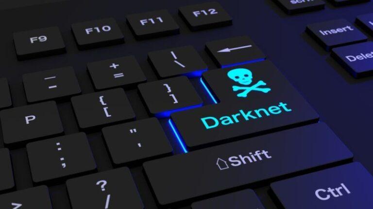 Chainalysis: la popularité du bitcoin sur le darknet continue d'augmenter